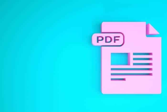 Smallpdf ined21